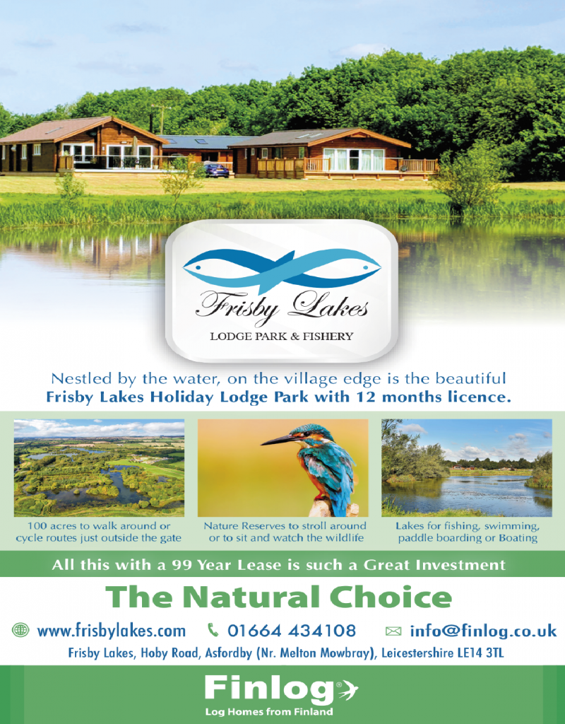 Frisby Lakes Flyer Design
