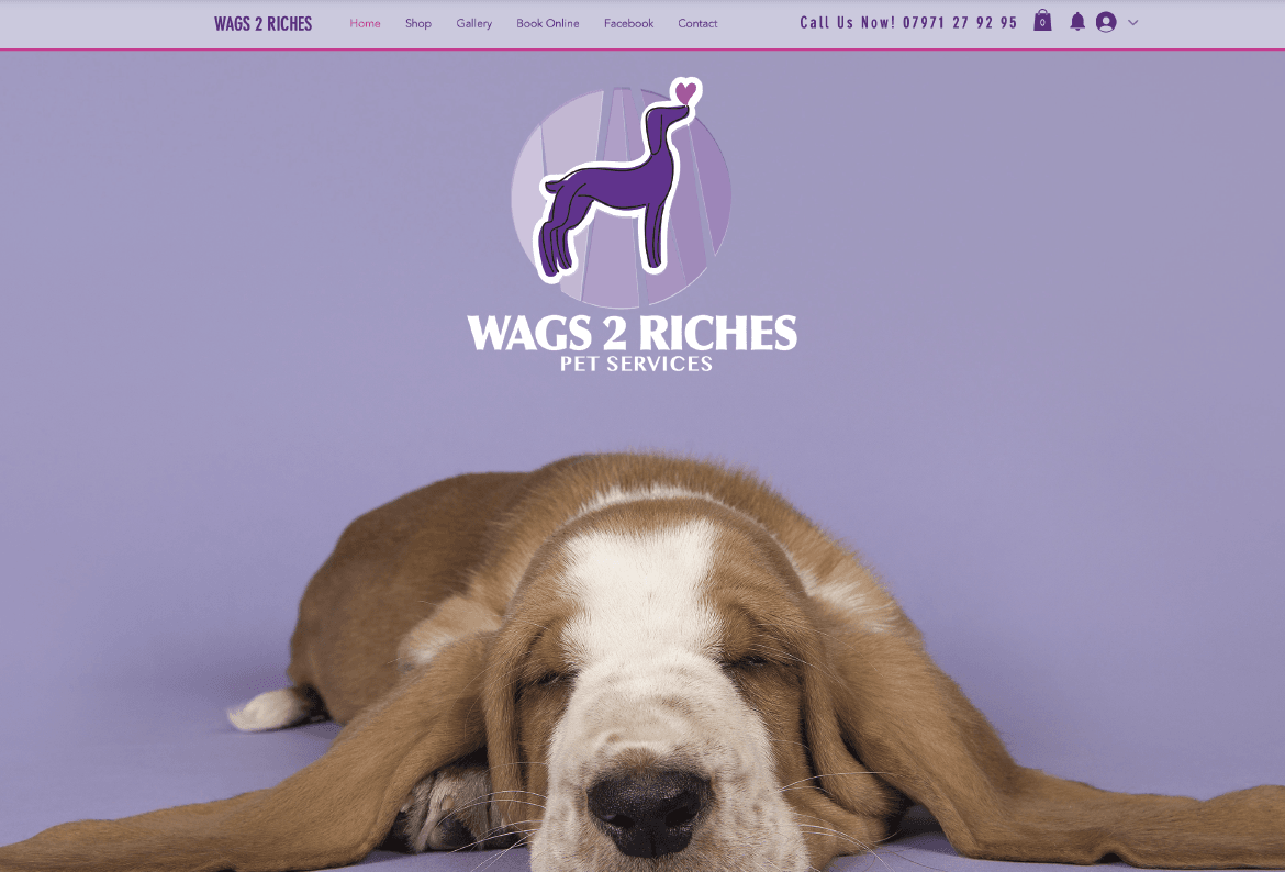 Web Design in Leicester – Wags 2 Riches